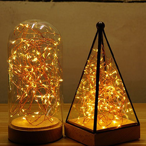 Seed Lights Copper Wire Battery Operated The Light Lady