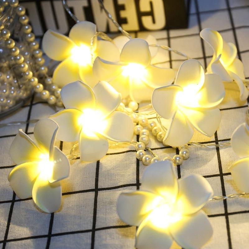 String Lights Nz: Beautiful Flower String Lights