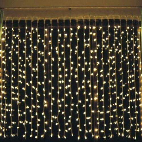 String Lights Nz: The Light Lady